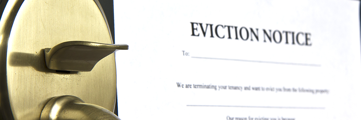 Brenda Muryzn Eviction Law
