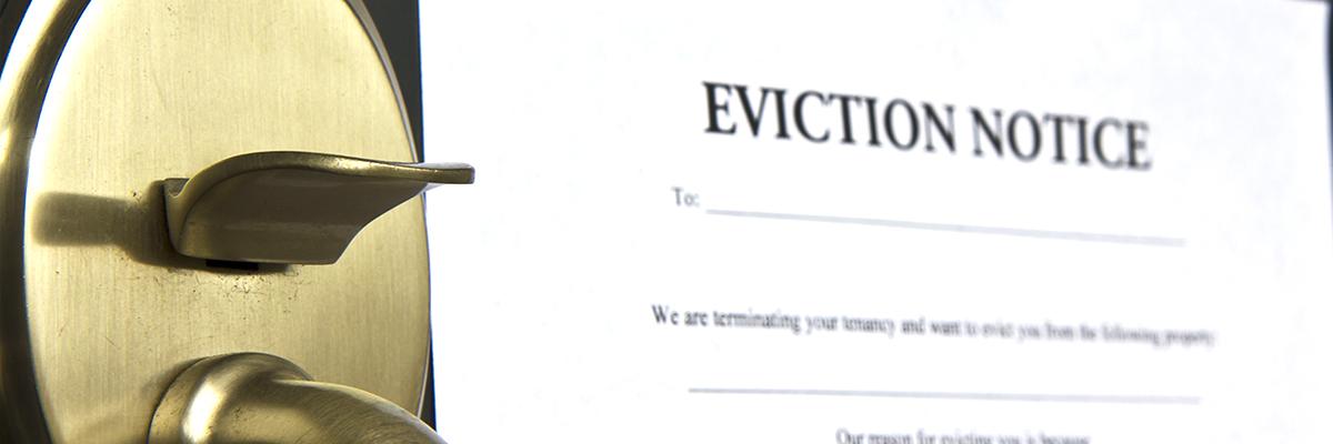 Brenda Muryzn Eviction Law
